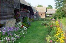 lonjsko polje jardin en fleurs