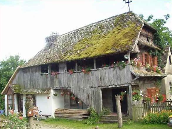 lonjsko polje maison