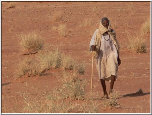 africain desert littérature africaine