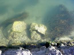 neretva riviere
