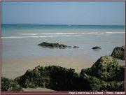 Dieppe, entre deux falaises de craie douce en Seine Maritime (Haute Normandie) 3