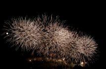 feu artifice carcassonne 2011 bouquet blanc