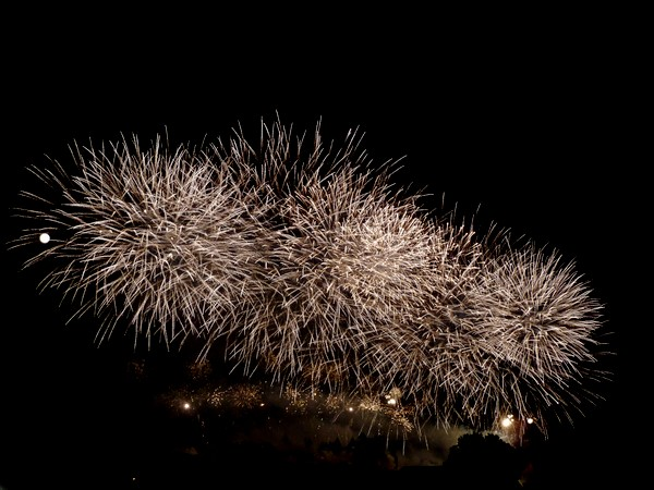 feu artifice carcassonne 2011 bouquet blanc