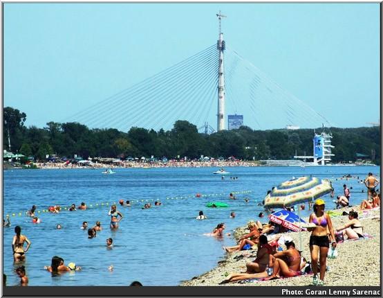 belgrade plage baignade sava