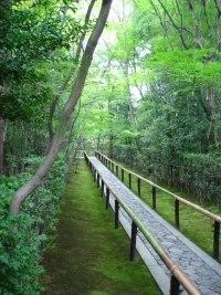 kyoto Hoshun in jardin