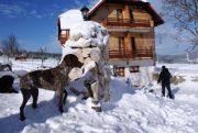mrzlingrad en hiver plitvice