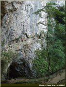 Skocjan, grottes classées au patrimoine mondial de l'UNESCO en Slovénie 3