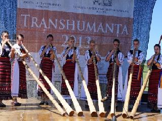 transhumanta 2013 Transhumance roumanie