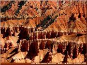 cedar breaks pics