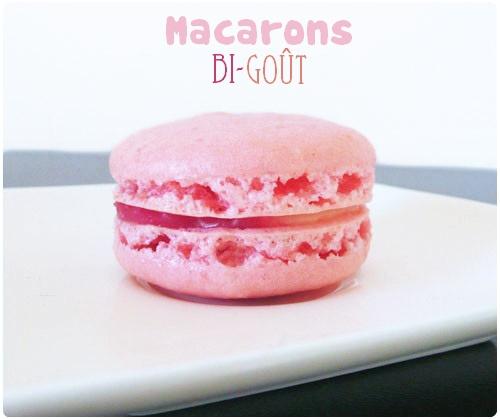 macaron bigout