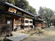 Voyage Japon : le Kansai, une région magnifique 6