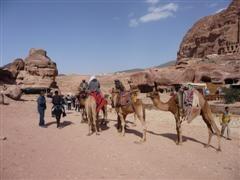 jordanie bedouins petra