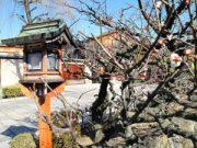 kyoto Shimbashi Dori – Hanamikoji