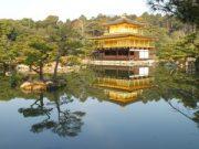 kyoto pavillon dor
