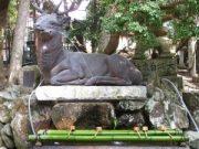 Voyage Japon : le Kansai, une région magnifique 10