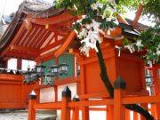 Voyage Japon : le Kansai, une région magnifique 3