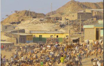 Ethiopie marché du sel de Berhale