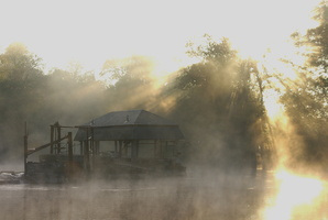 automne brouillard