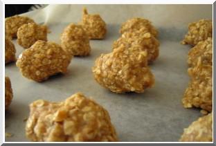 boulettes croquants avoine gingembre