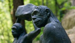 krapina homme neandertal
