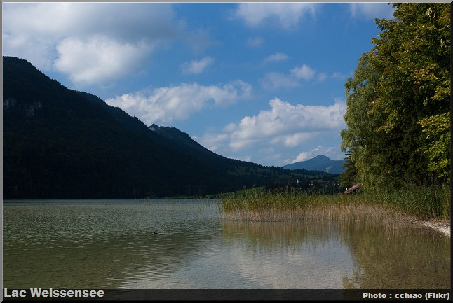 lac weissensee