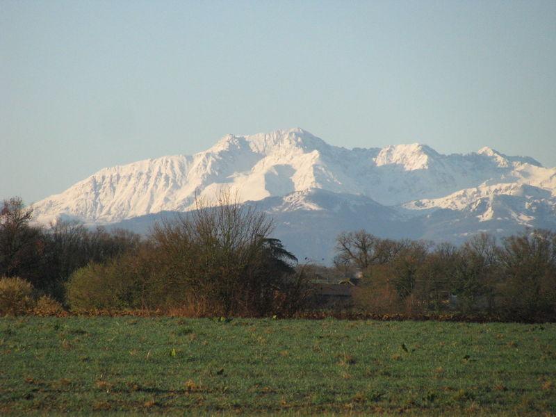 Pyrenees enneigees