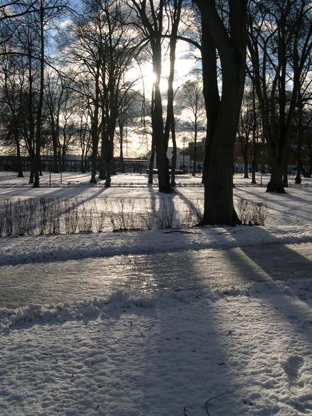 neige en suede