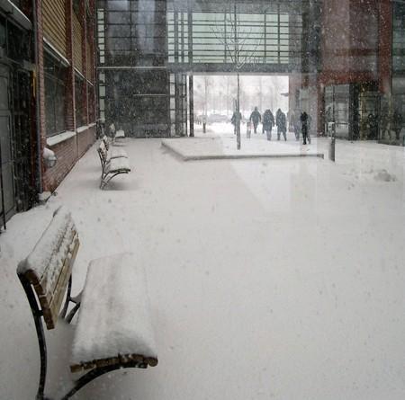 neige universite suede
