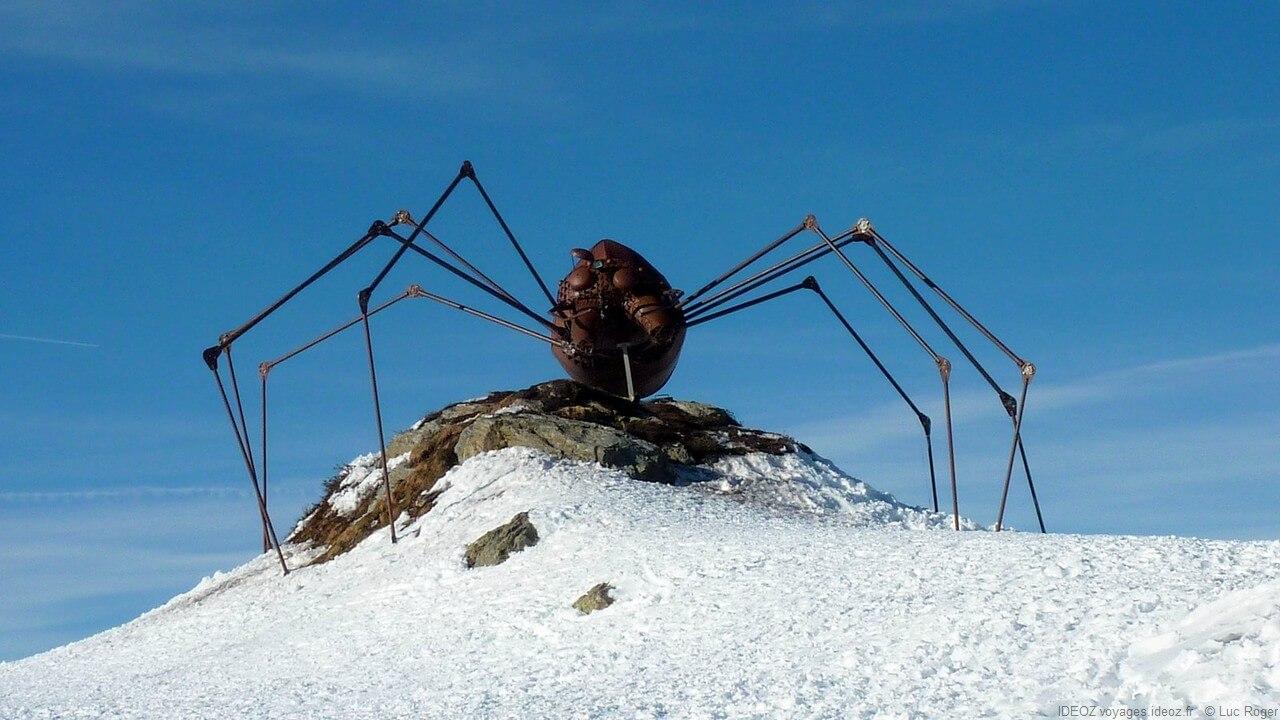 Araignée sur le Zillertal Tirol