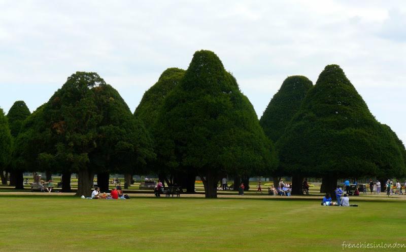 Hampton court palace Jardins