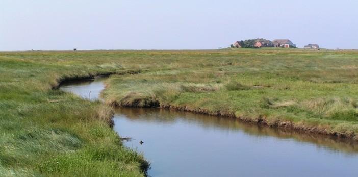 Iles Halligen : Langeneβ et Südroog ; l'île des enfants (Schleswig Holstein, Allemagne) 1
