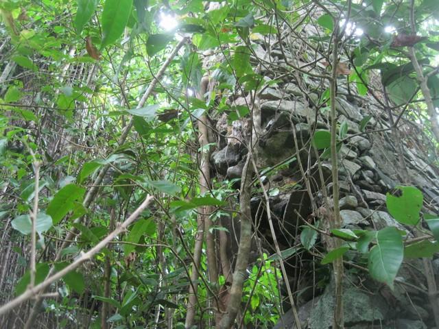 Moulin du Morne la Plaine Martinique