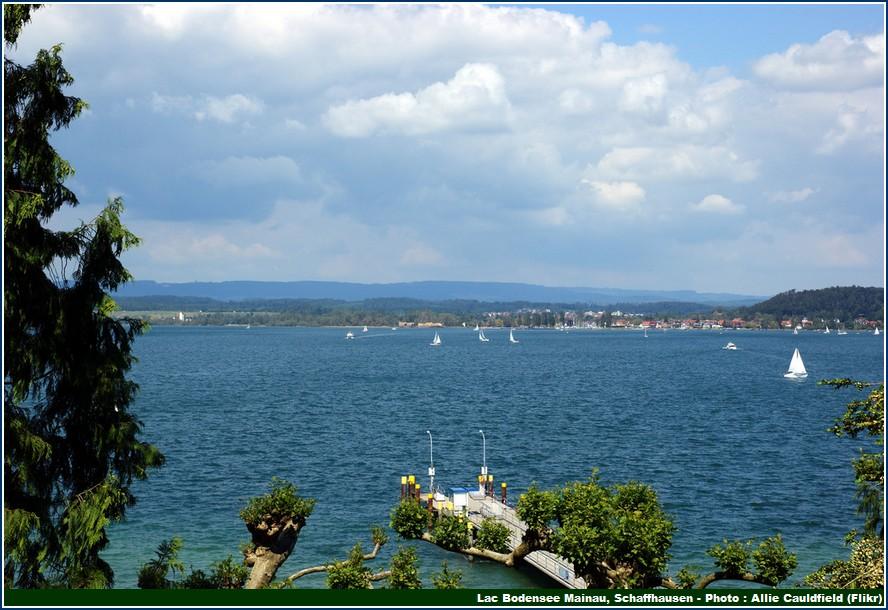 lac bodensee mainau schaffhausen