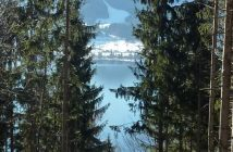 lac tegernesee forets neureuth