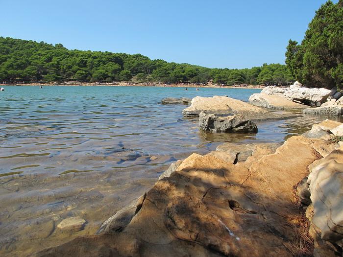 lacs telascica