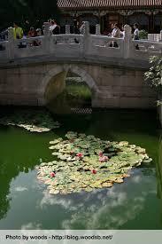 Visiter Pekin : de Tian An Men à la Cité interdite : Vacances en Chine en famille 1