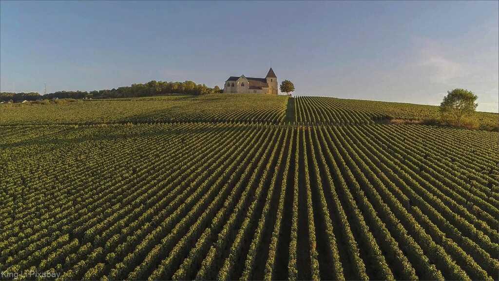 route des vins de champagne