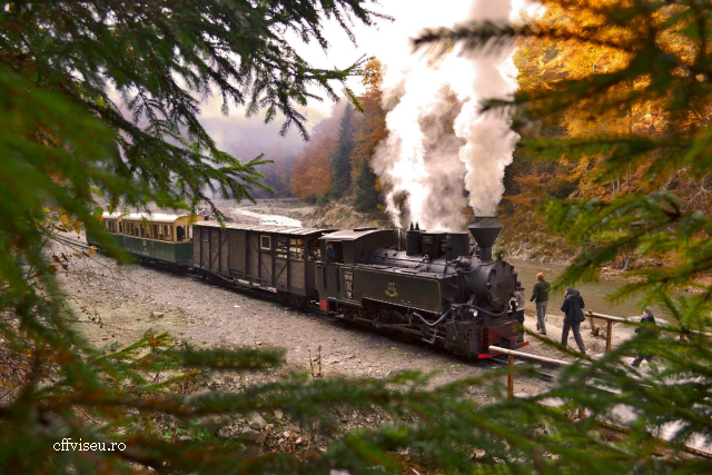 train vapeur mocanita