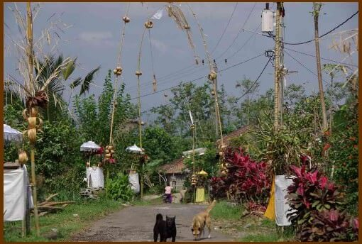 Bali fête de Kuningan