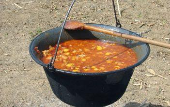 Goulash gulyaseves