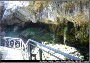 Grotte kaklik vegetation