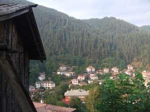Guela maison en bois