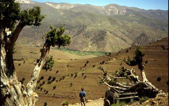 Maroc Haut Atlas paysage