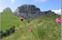 Montagnes Bosnie Maglic