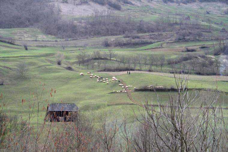 Paysage de Bistrita en Roumanie