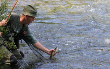 La pêche sur le lac de brochet