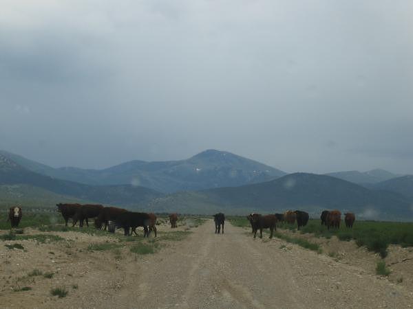 Piste du Nevada près de Poney express