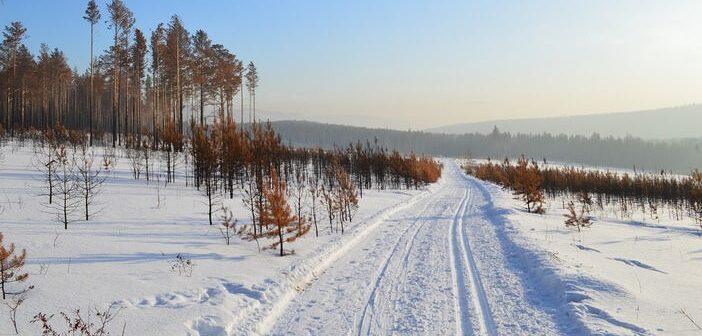 sentier enneigé en sibérie
