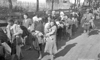 deportation juifs transylvanie