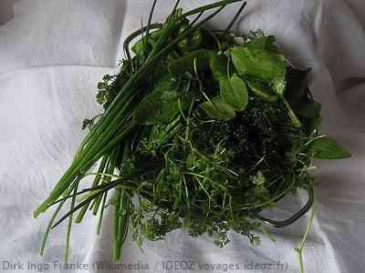 herbes pour la sauce verte de frankfort